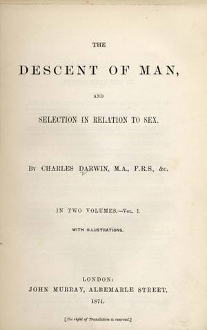 The Descent of Man Summary