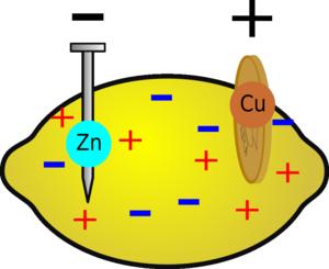 Fruit-Power Battery