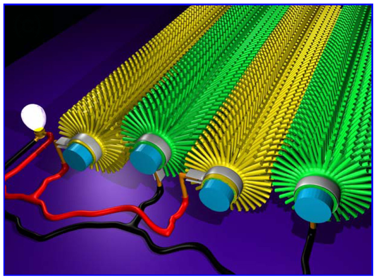 Nanowire Array