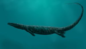 Mososaur reconstruction