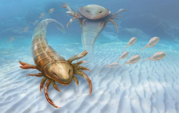 giant sea scorpion