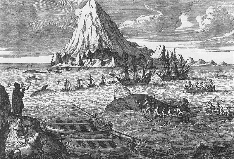 Arctic whaling in the eighteenth century.