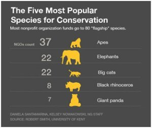 The five most popular species for conservation