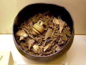 Ancient cremated human remains