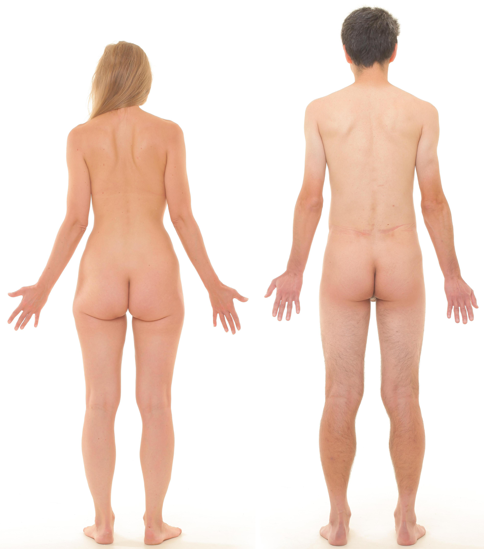 Naked bodies optical illusion bluepants