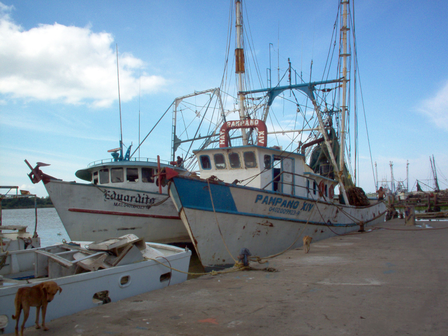 Mexican fishing boats