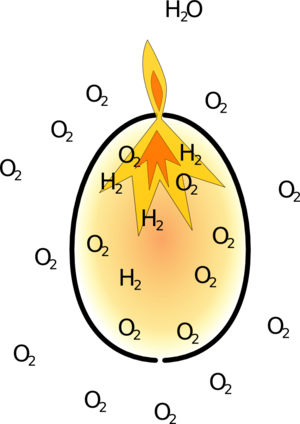 Egg ignition
