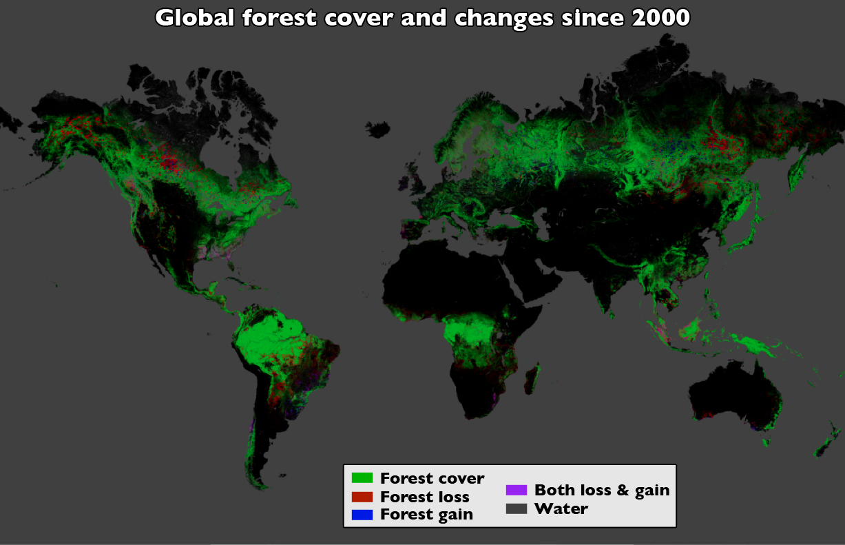 Satellite map of deforestation