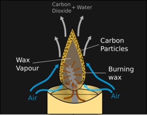 Cross section of a candle