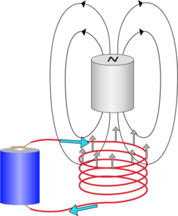 Simple motor homopolar motor kitchen science for Homopolar motor science project