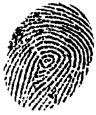 Dna_fingerprinting_fingerprint