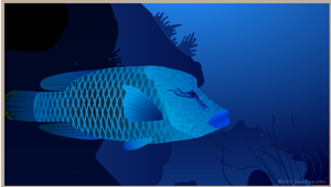 Humphead wrasse animation still by Jo and Joe cards