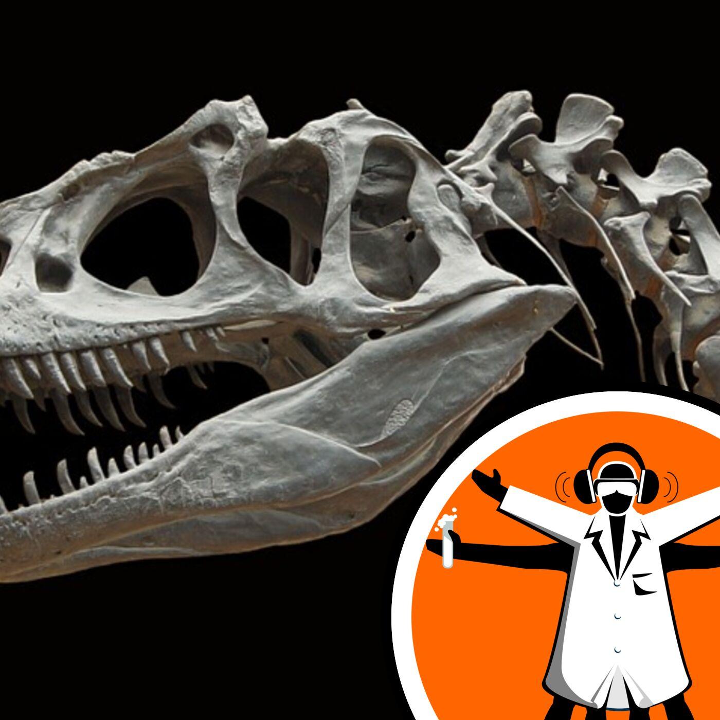 T-rex teens fill mid-size predator gap