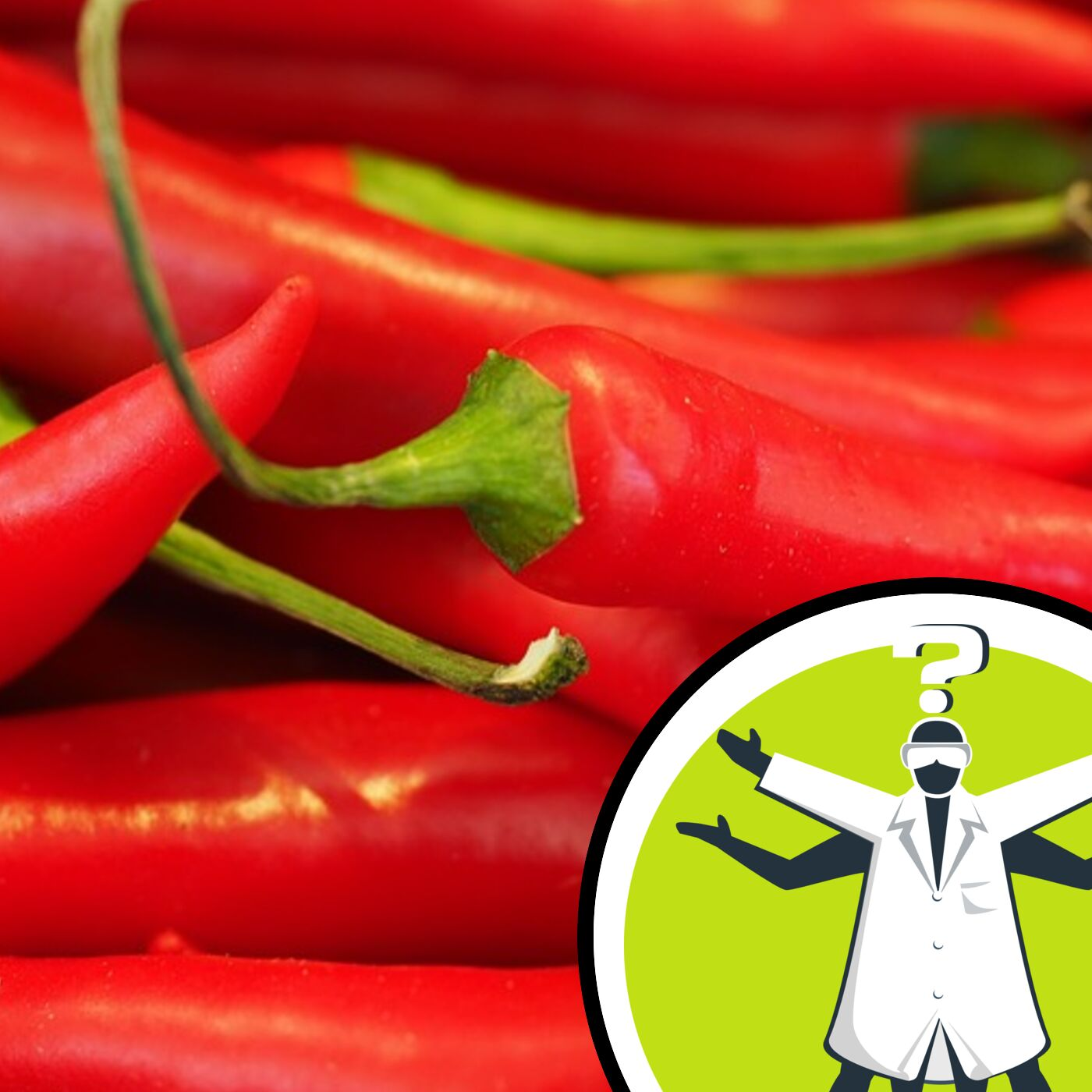 Why do chillies stay on your hands?