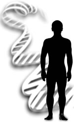 There are about 3 billion DNA letters in the human genome (genetic blueprint). But only about 1% of those DNA letters differ between individuals. DNA (genetic) fingerprinting exploits the differences in that 1% to tell people apart.