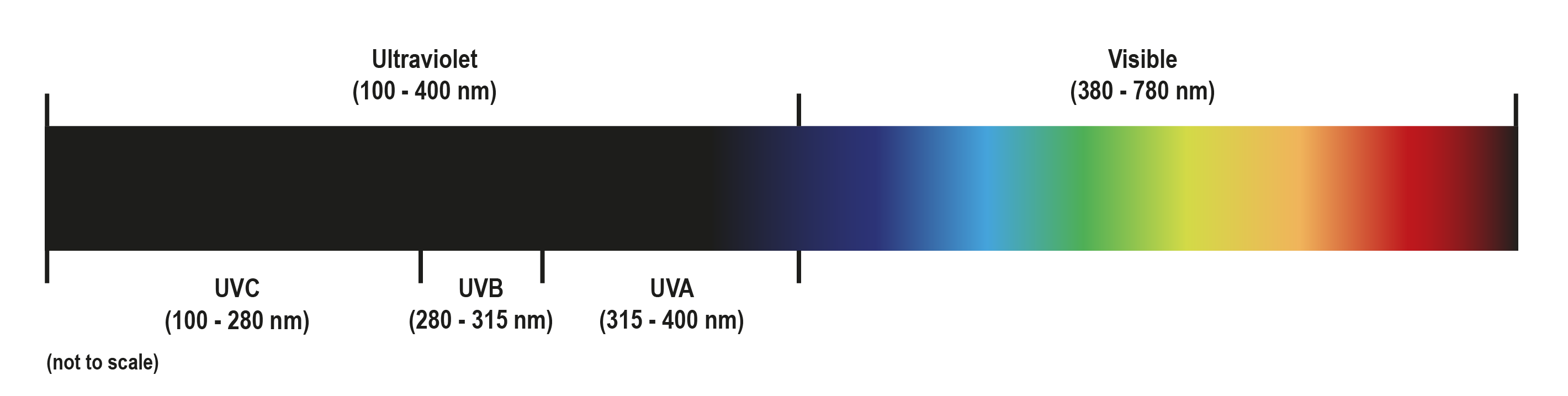 The electromagnetic (EM) spectrum from UV to visible light