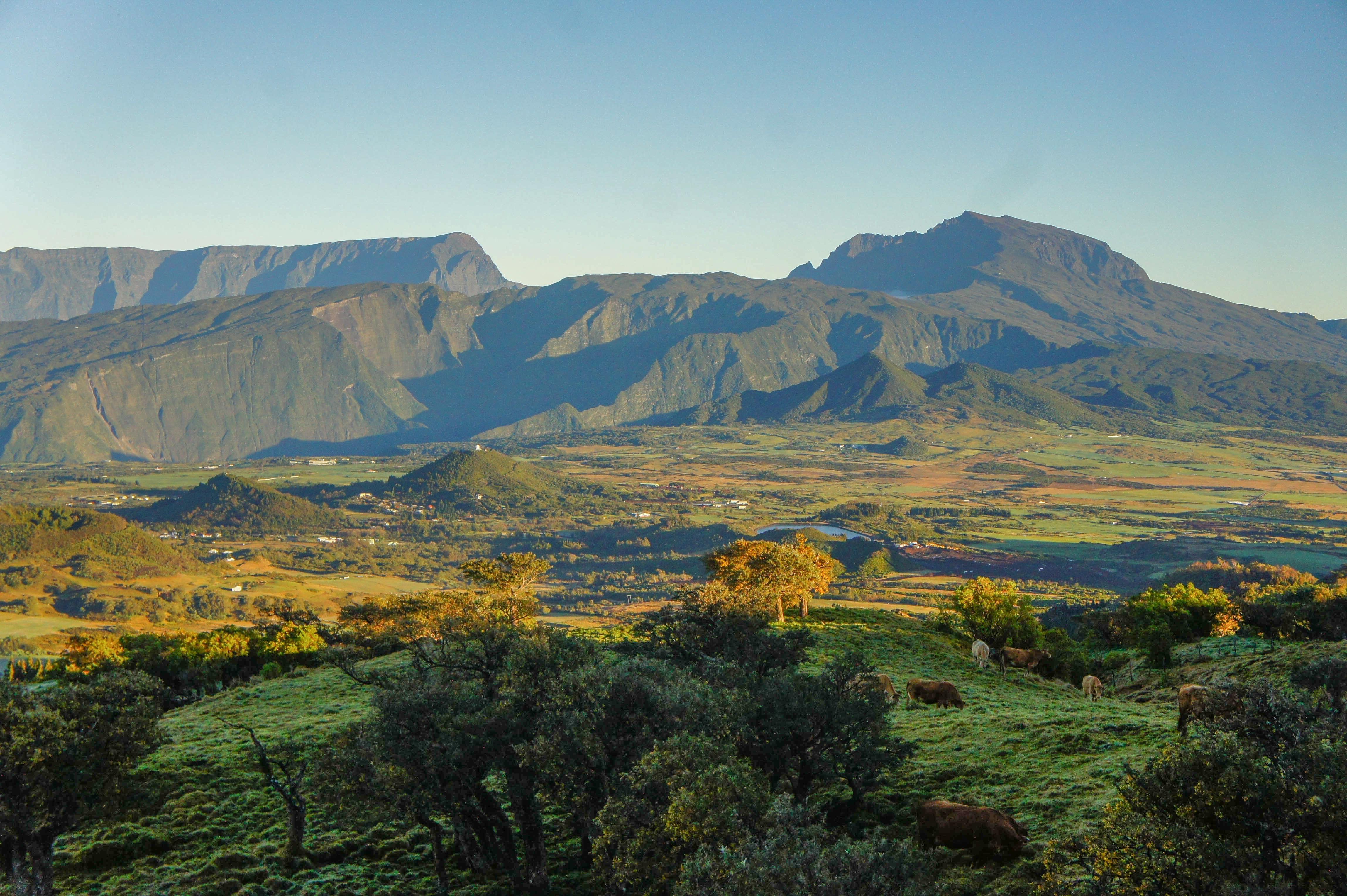 landscape, mountain