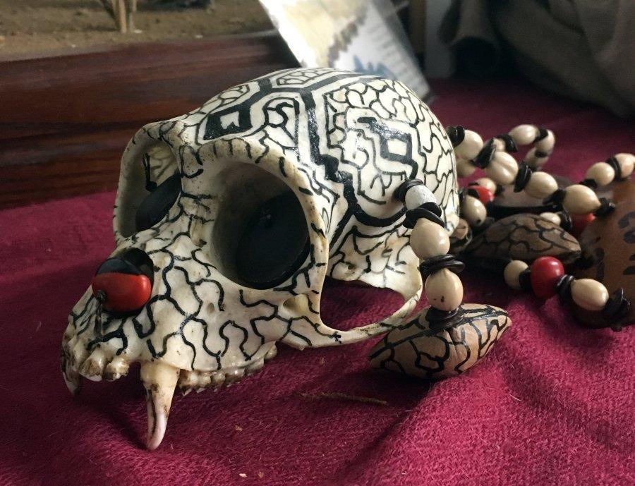 Monkey skull on a necklace