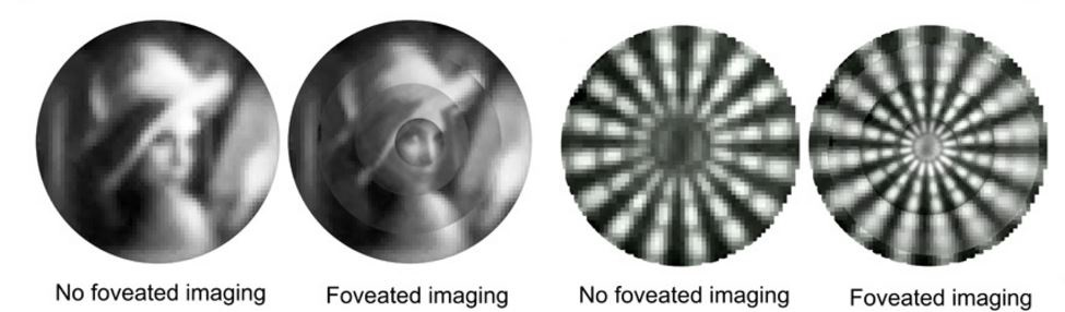 A foveated image is sharp in the centre and less focused towards the edges.