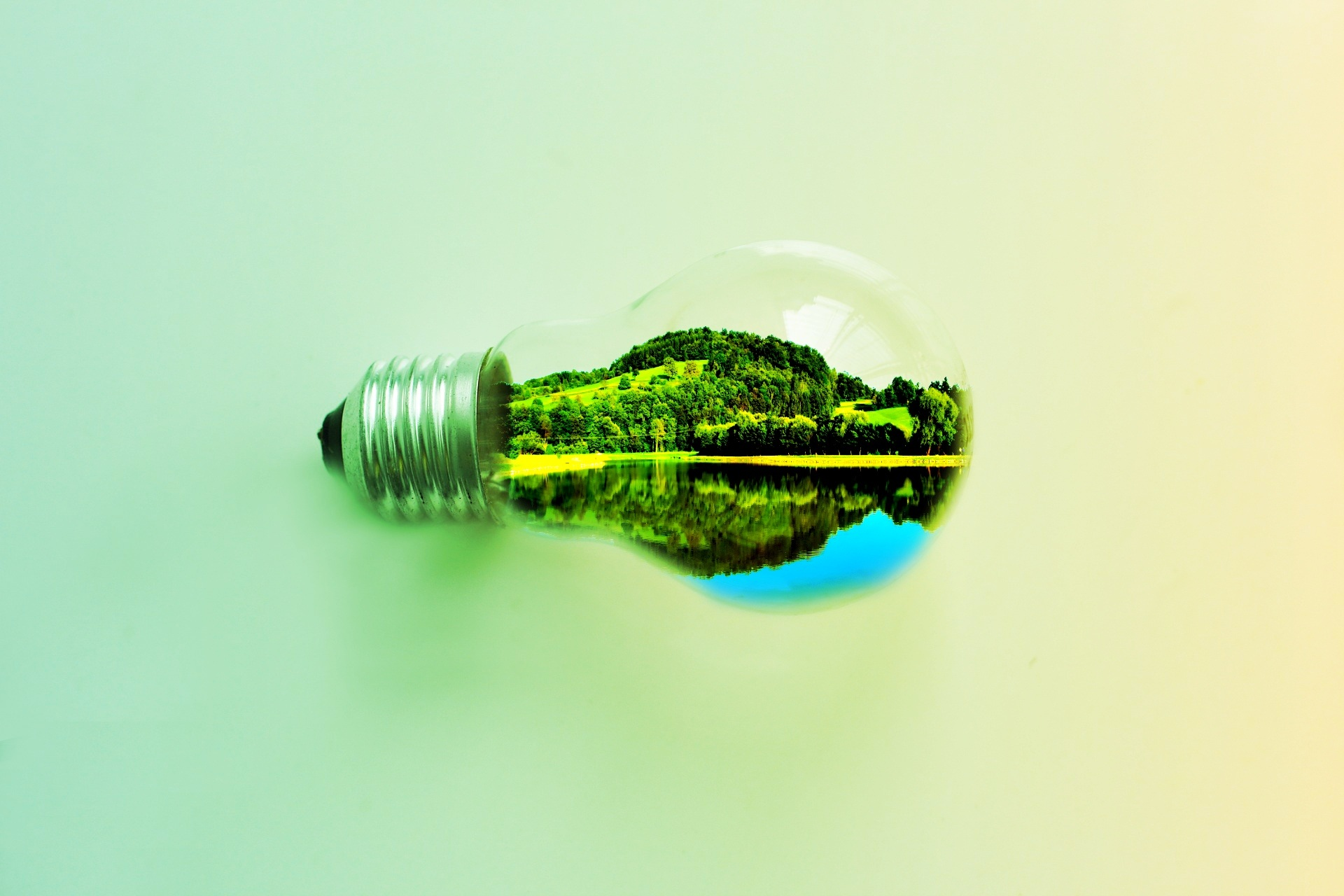 A Light bulb with the world in it