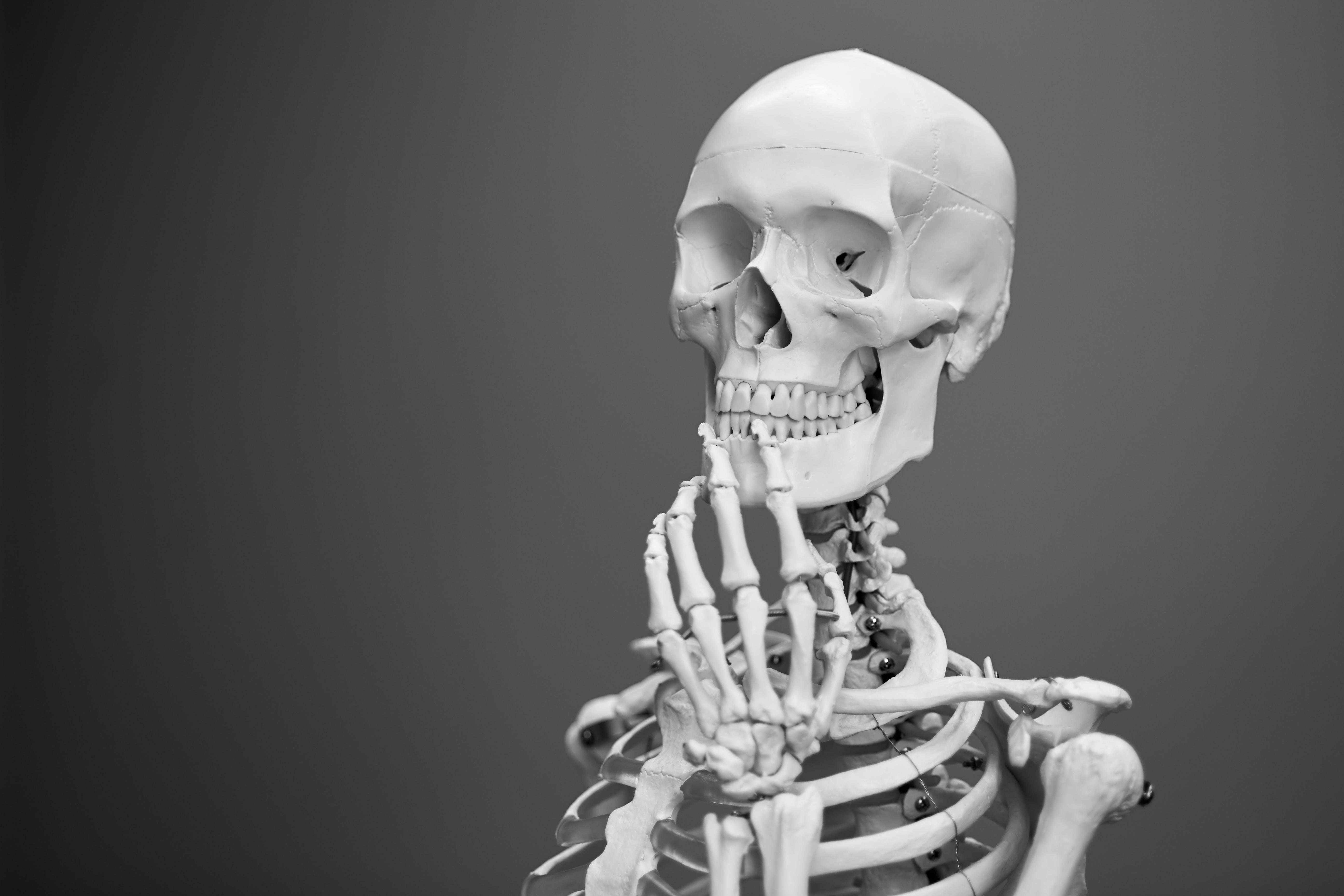 A posing mannequin skeleton