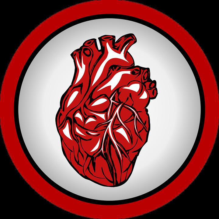 Logo of a human heart