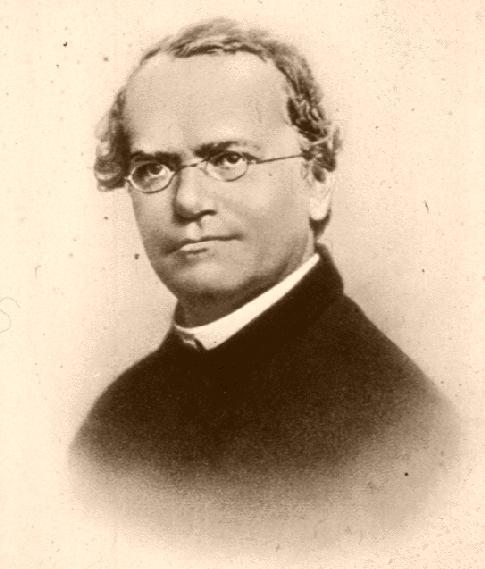 Gregor Mendel, father of genetics