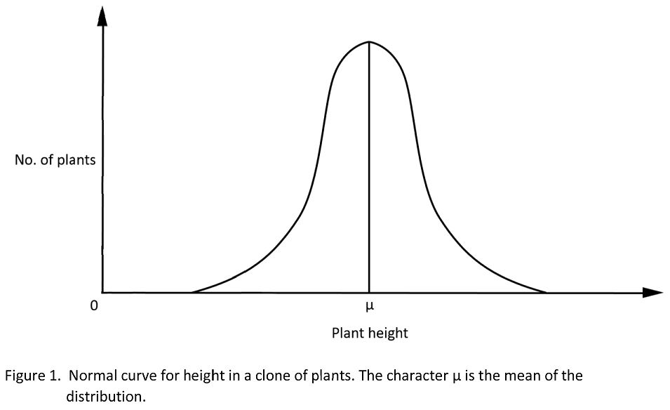 Plant height for clone follows a Normal distribution.