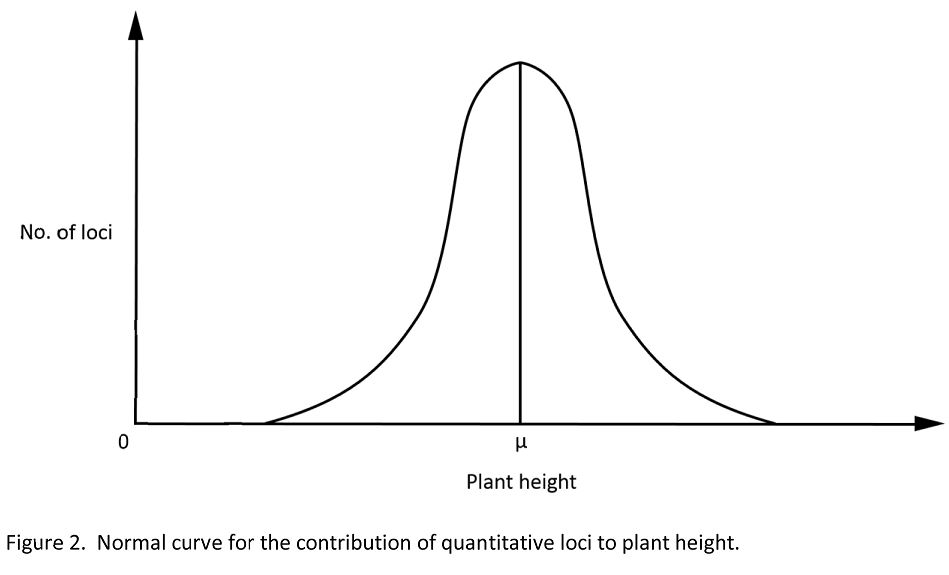 Normal curve for the contribution of quantitative loci in plants.