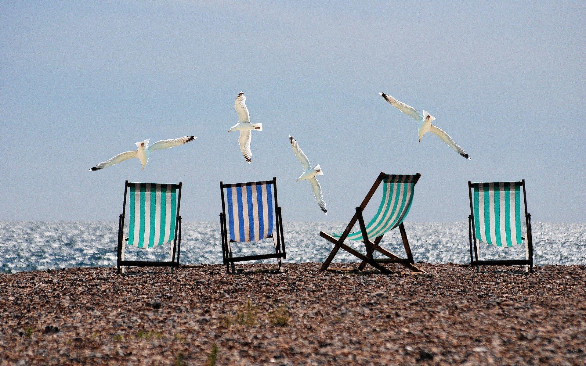 Deck chairs on beach