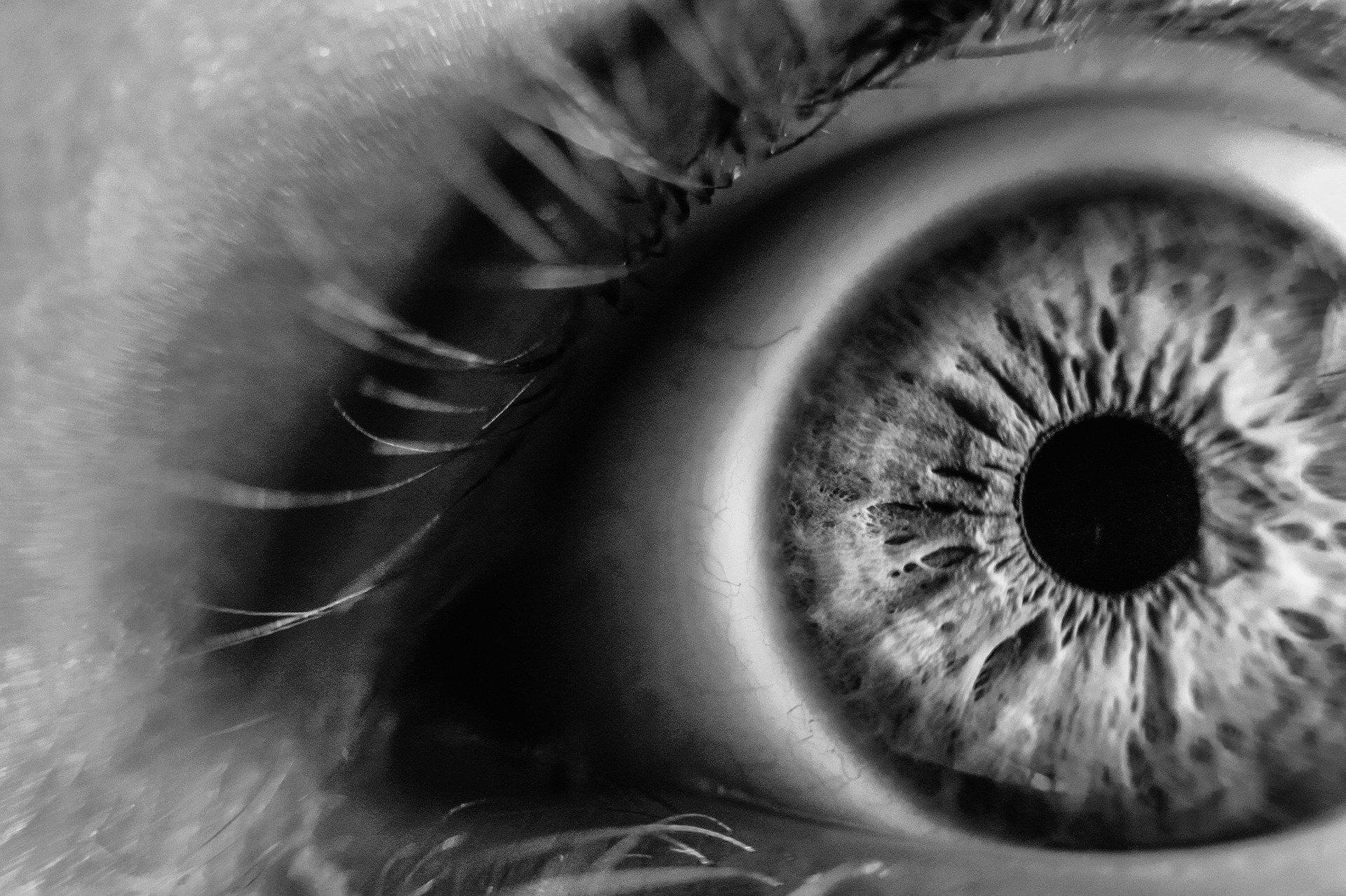 Restore Vision
