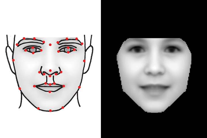 Computer face modelling