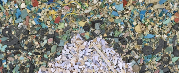 Tiny pieces of plastic can enter the food chain, endangering marine animals and humans.