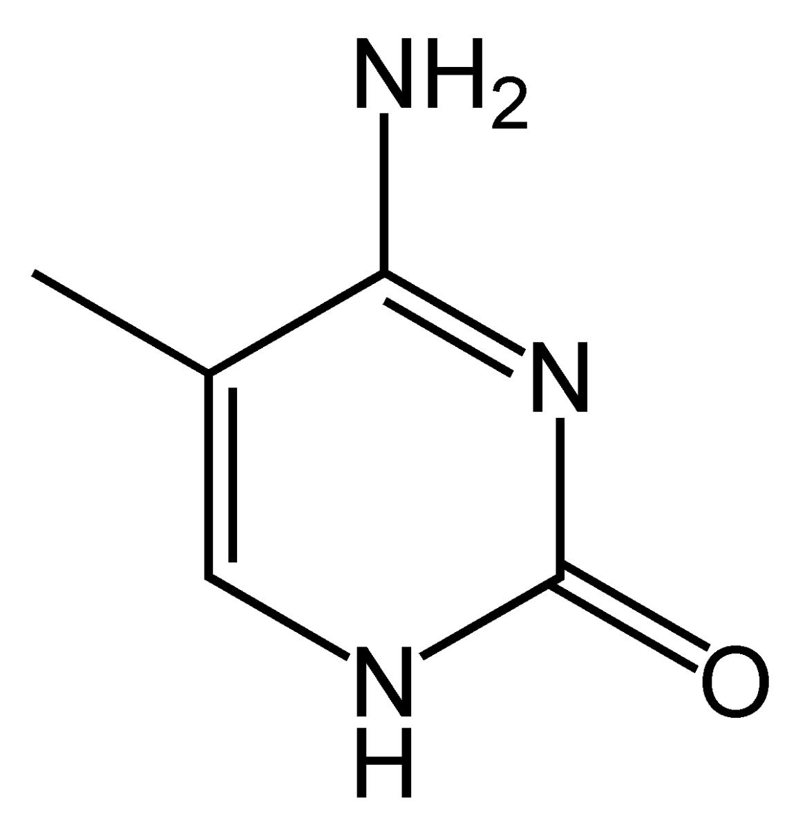Methylcytosine
