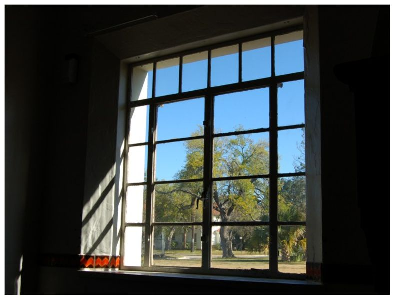 View out a window from a darkened room. Fort Sam Houston, San Antonio Texas (December 2006).