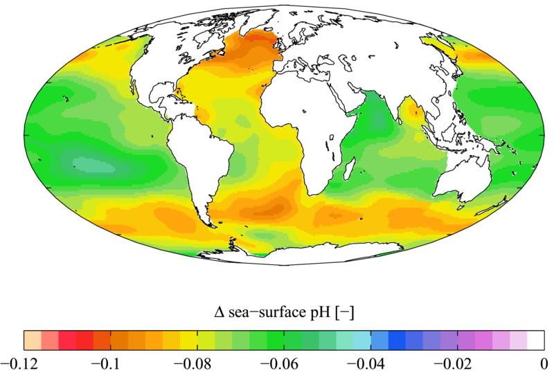 global acidification