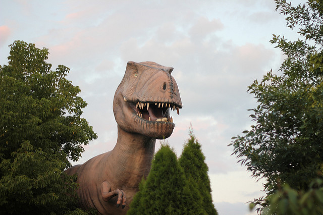 Dinosaurs could have lived in pain due to their painful arthritis