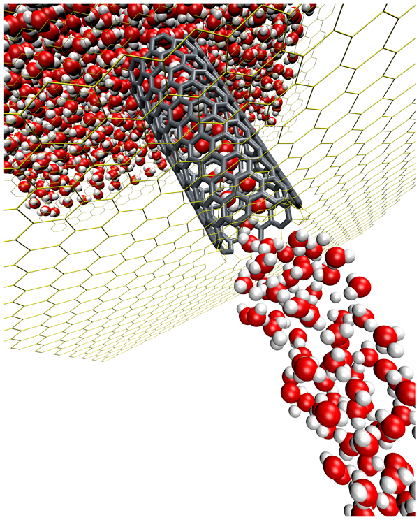 A computational molecular simulation of highly-efficient water filtration.