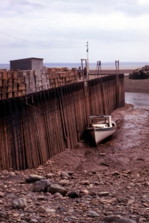 The bay of Fundy at low tide, 1972.