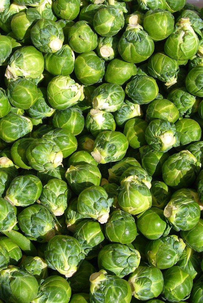 http://en.wikipedia.org/wiki/Image:Brussels_sprout_closeup.jpg...