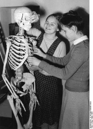 Students at the Institute for the Blind Marburg / Lahn, learn about human anatomy