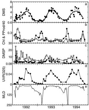 from Toole & Siegel (2004) showing the relationship between UV light and DMS concentration in the Sargasso sea. There is a clear correlation between UV radiation (UVR) and DMS concentration. What is really interesting about this is that DMS concentration spikes when chlorophyll concentration (indicative of how abundant phytoplankton are in the water) is at a minimum, showing that it is not just a result of having more phytoplankton in the water. The DMS spikes also coincide with a shallow Mixed Layer Depth (MLD), where the phytoplankton will be trapped closer to the ocean surface.