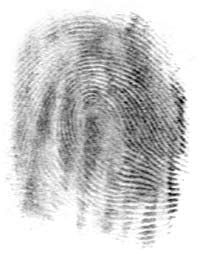 A fingerprint on paper