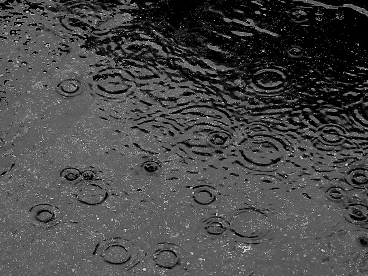 Raindrops falling on water