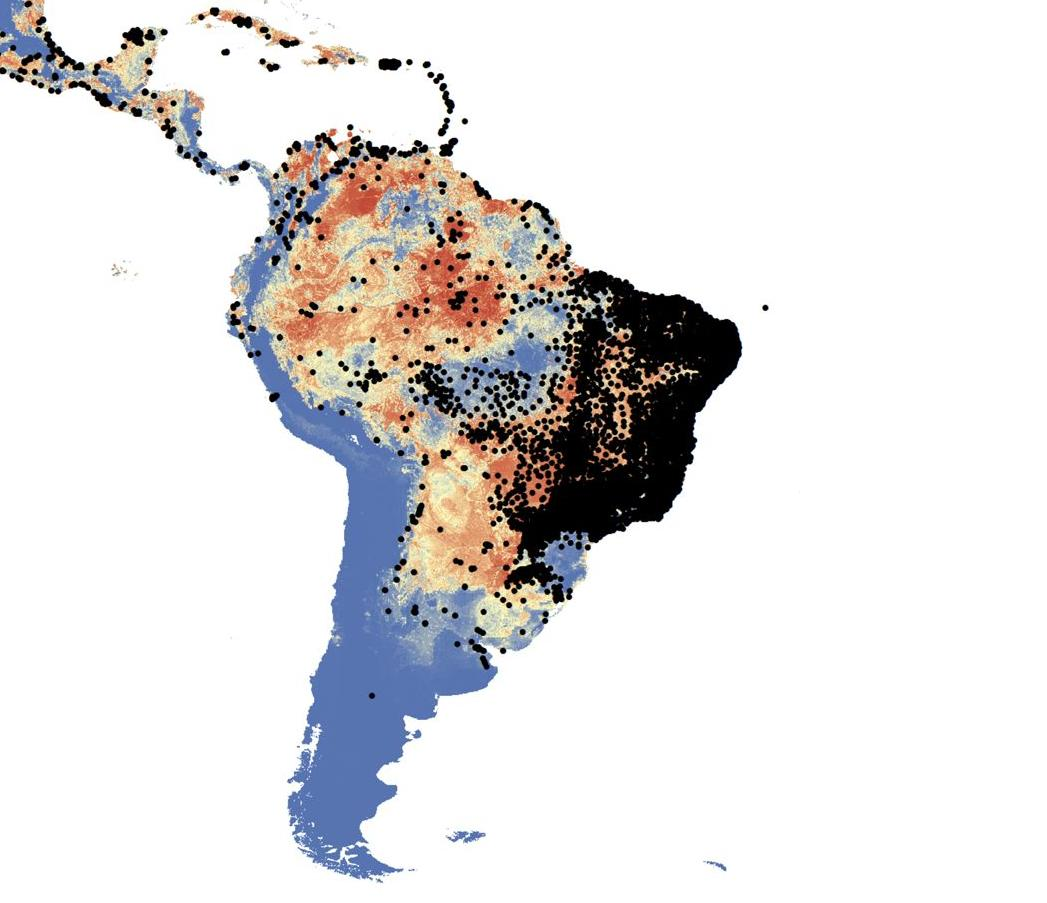 Mapping the distribution of mosquitoes: Aedes aegypti and Aedes albopictus are now increasing their geographical spread but also their numbers and overall health burden on the population.
