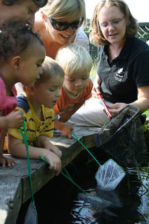 Pond dipping at the WWT London Wetland Centre
