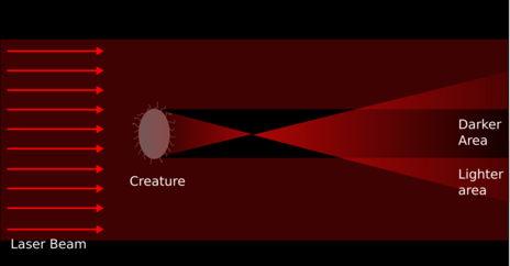 Creature focussing light