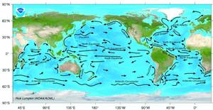 Major surface ocean currents