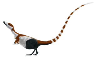 Digital illustration of the coelurosaurian dinosaur ''Sinosauropteryx prima'', based on the holotype specimen.