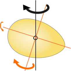 Egg rotation vectors